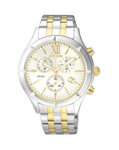 Citizen Ladies Two Tone Stainless Steel Quartz Watch